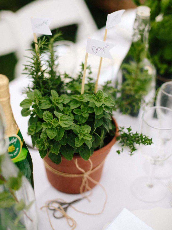Cute little herb pot for summer garden party centerpiece