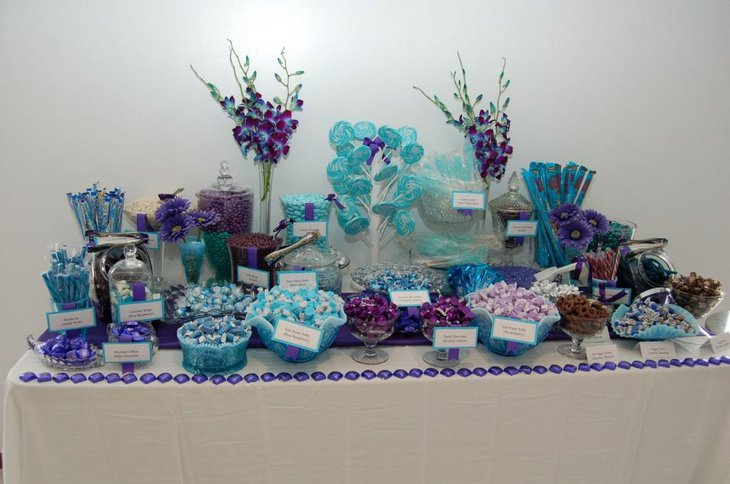 Gorgeous Purple Baby Shower Candy Table With Blue Tones
