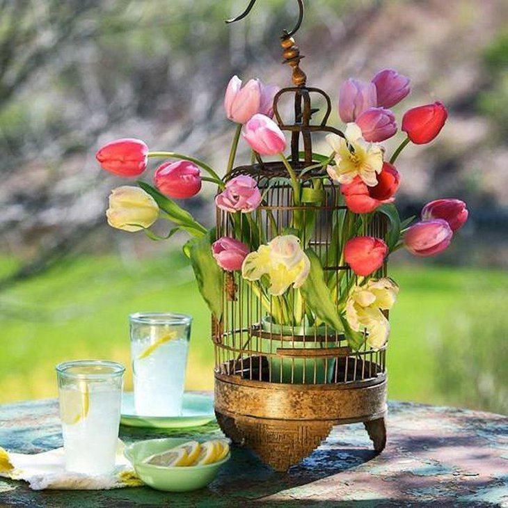 Spring birdcage decoration on garden party table