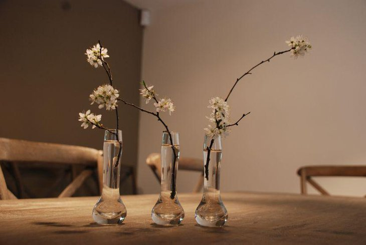 Spring blossom in glass vases for spring table