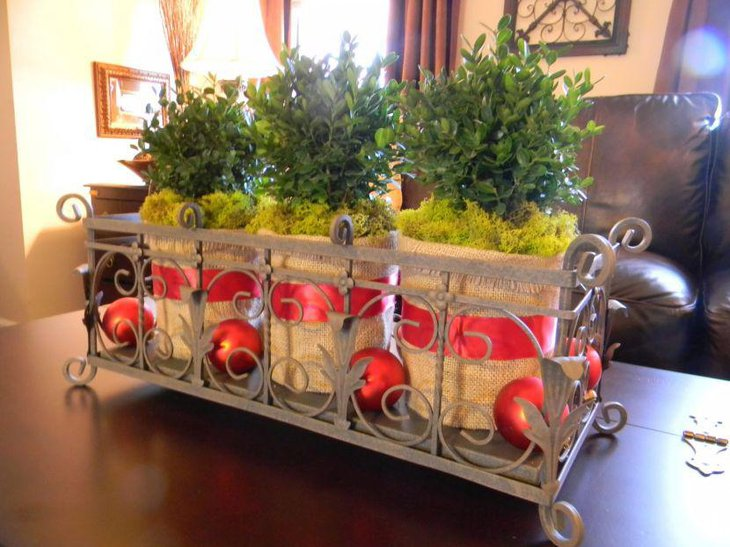 Unique boxwood bush in metal planter as coffee table centerpiece