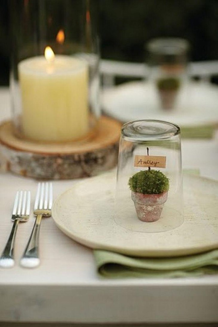 Winter table decor with poted plants and wooden slabs